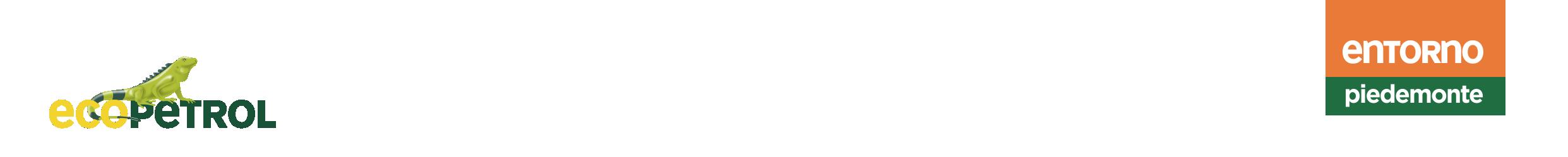 Entorno Piedemonte